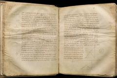Bodleian, MS. D'Orville 301